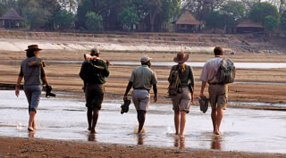 Walking Safari Zambia