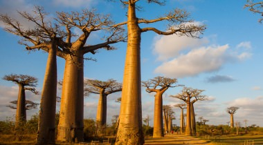 Madagaskar rondreis op maat