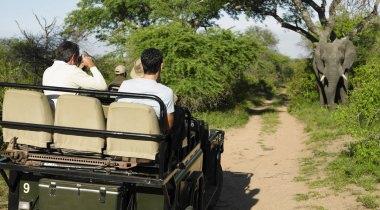 Zuid Afrika Familiereis