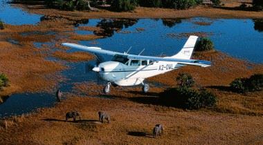 Safari deluxe Botswana
