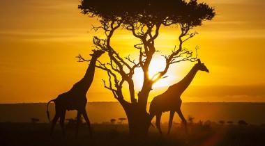 Verrassende rondreis door Kenia