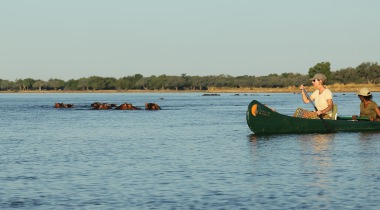 Diverse Avontuurlijke kanosafari's Mana Pools