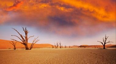 100% Namibië & Botswana
