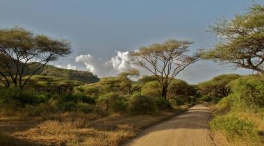 Het beste van Tanzania & Zanzibar