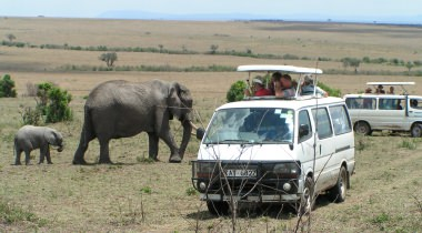 Op safari in Kenia!