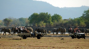 Luxe safari reis door de mooiste nationale parken van Zambia