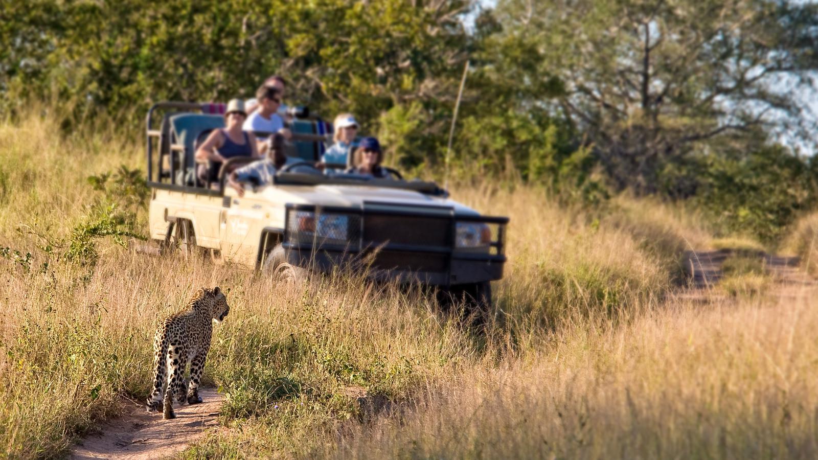kruger park, een van afrika\u0027s meest bekende parken safari planner comkruger national park
