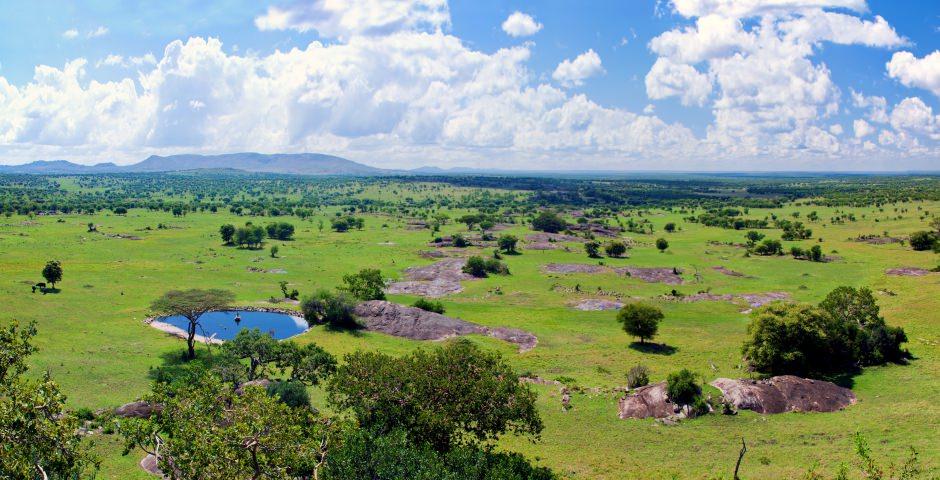 De vlaktes van Serengeti Nationaal Park zijn onovertroffen