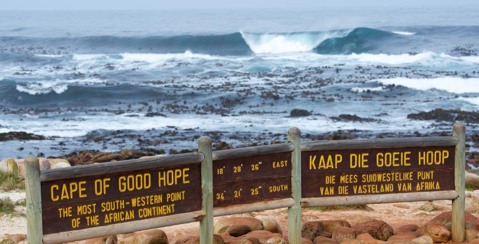 Pinguïns en natuur op Kaap de goede Hoop